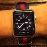 Apple Watch(アップルウォッチ)替えベルトのレビュー《DWリボンベルト編》